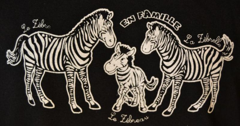 """colloque AFEP 17 mai """"ÊTRE UN ENFANT INTELLECTUELLEMENT PRÉCOCE HEUREUX, C'EST POSSIBLE !"""" Zebre"""